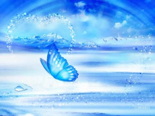 """""""Blue_Butterfly"""""""
