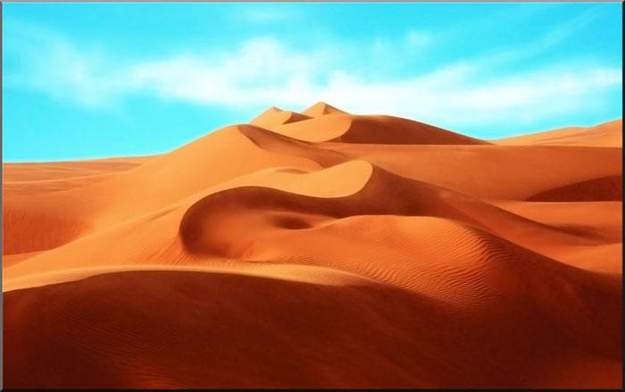 wüste oder paradies