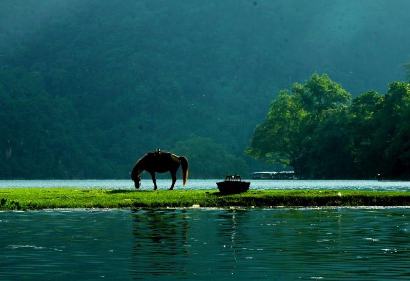 Ảnh đẹp vườn quốc gia Ba Bể Bắc Kạn