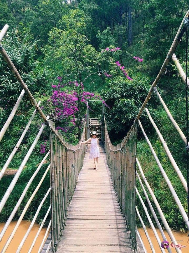 Cây cầu treo một trong những địa điểm yêu thích nằm ở ma rừng lữ quán