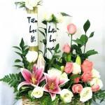 Hình nền đẹp ngày nhà giáo Việt Nam 20- 11- 2012