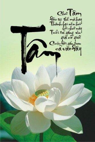 """Thu-phap-chu-Tam"""