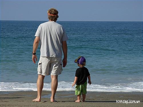 những hình ảnh đẹp về tình cha con