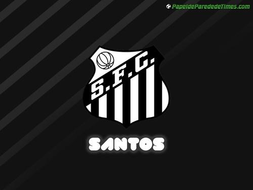 hinh-dep-logo-doi-bong-santos