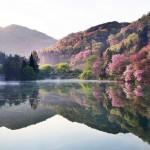 Cảnh đẹp xứ Hàn.