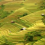 Bộ sưu tập ảnh đẹp về đất nước Việt Nam