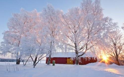 mùa đông