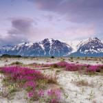 Bộ sưu tập ảnh đẹp về phong cảnh thiên nhiên