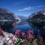 Ngỡ ngàng với phong cảnh thiên nhiên qua bộ sưu tập ảnh nền về thiên nhiên