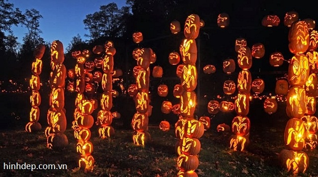 le-hoi-halloween