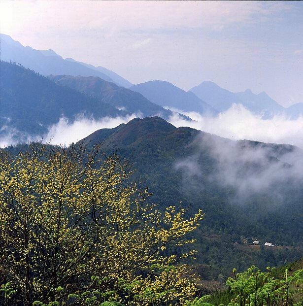 Núi Hàm Rồng Sa Pa tuyệt tác kỳ vĩ của tạo hóa