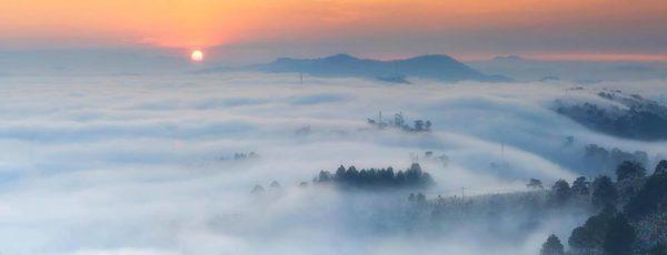 Đà Lạt lung linh trong sương khói