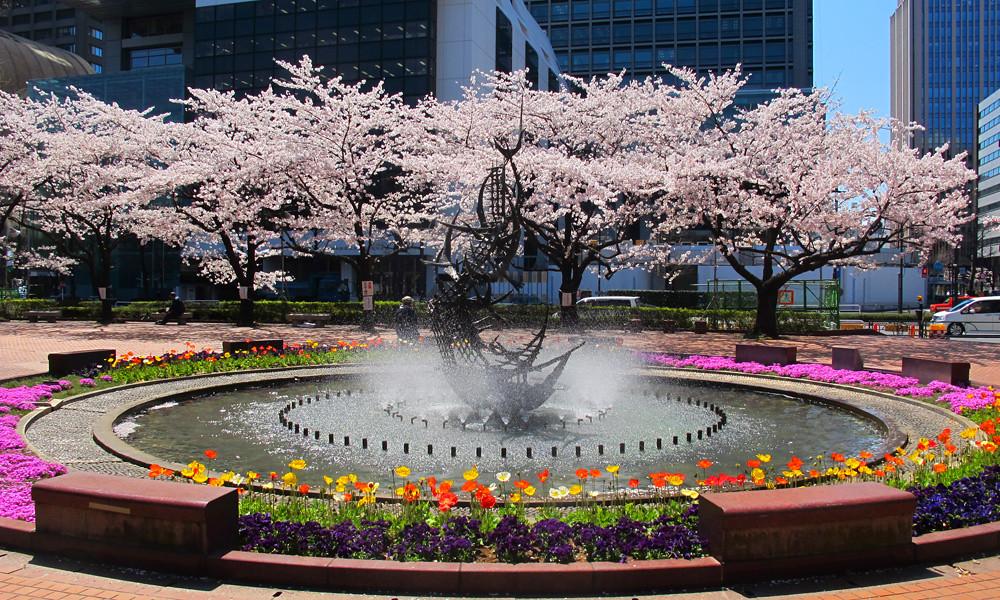 Hibiya park nơi ngắm hoa anh đào tuyệt đẹp